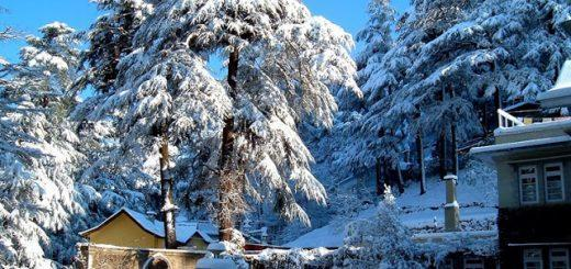 Shimla hoenymoon detination in india