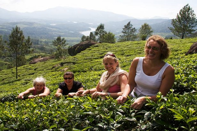 Munnar - Destinations in India for Women Solo Travelers