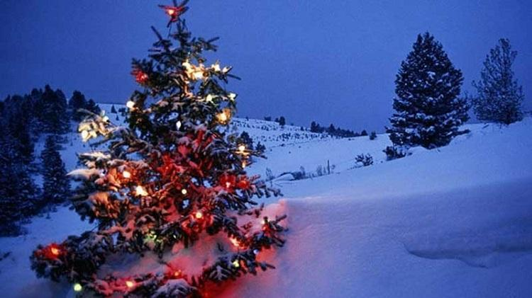 Christmas In Manali