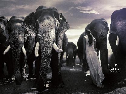 Kerala Tourism Your Moment is Waiting Campaign
